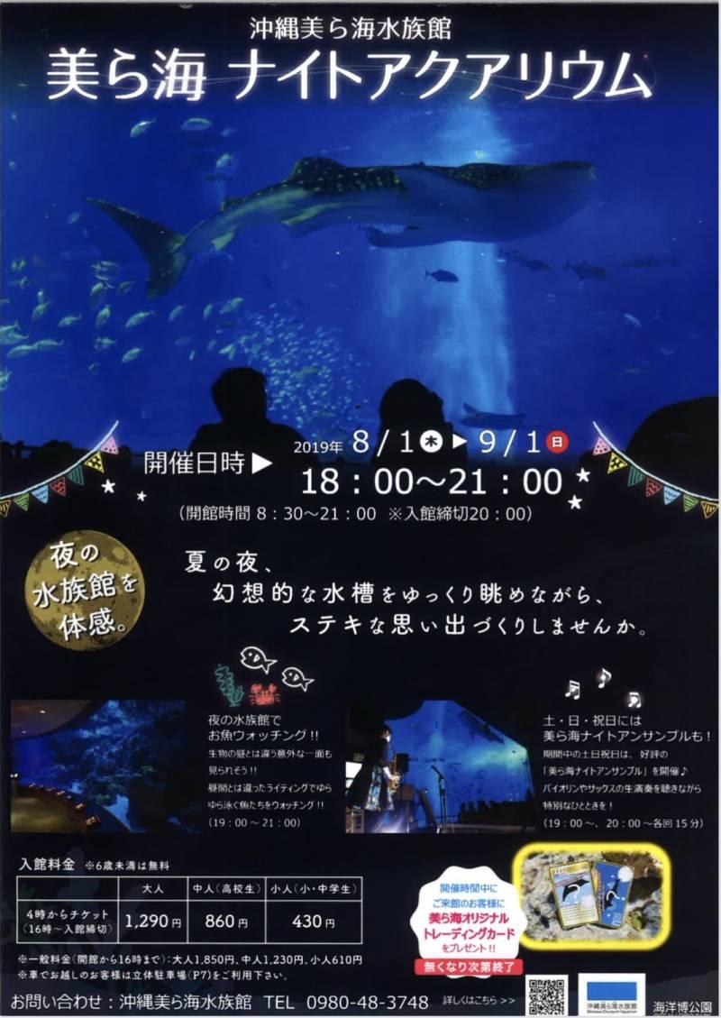 ★美ら海水族館 ナイトアクアリウム★